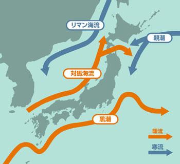 さかさ地図の発想と日本海学 | 海洋政策研究所-OceanNewsletter | 笹川 ...