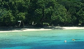 太平洋島嶼国事業