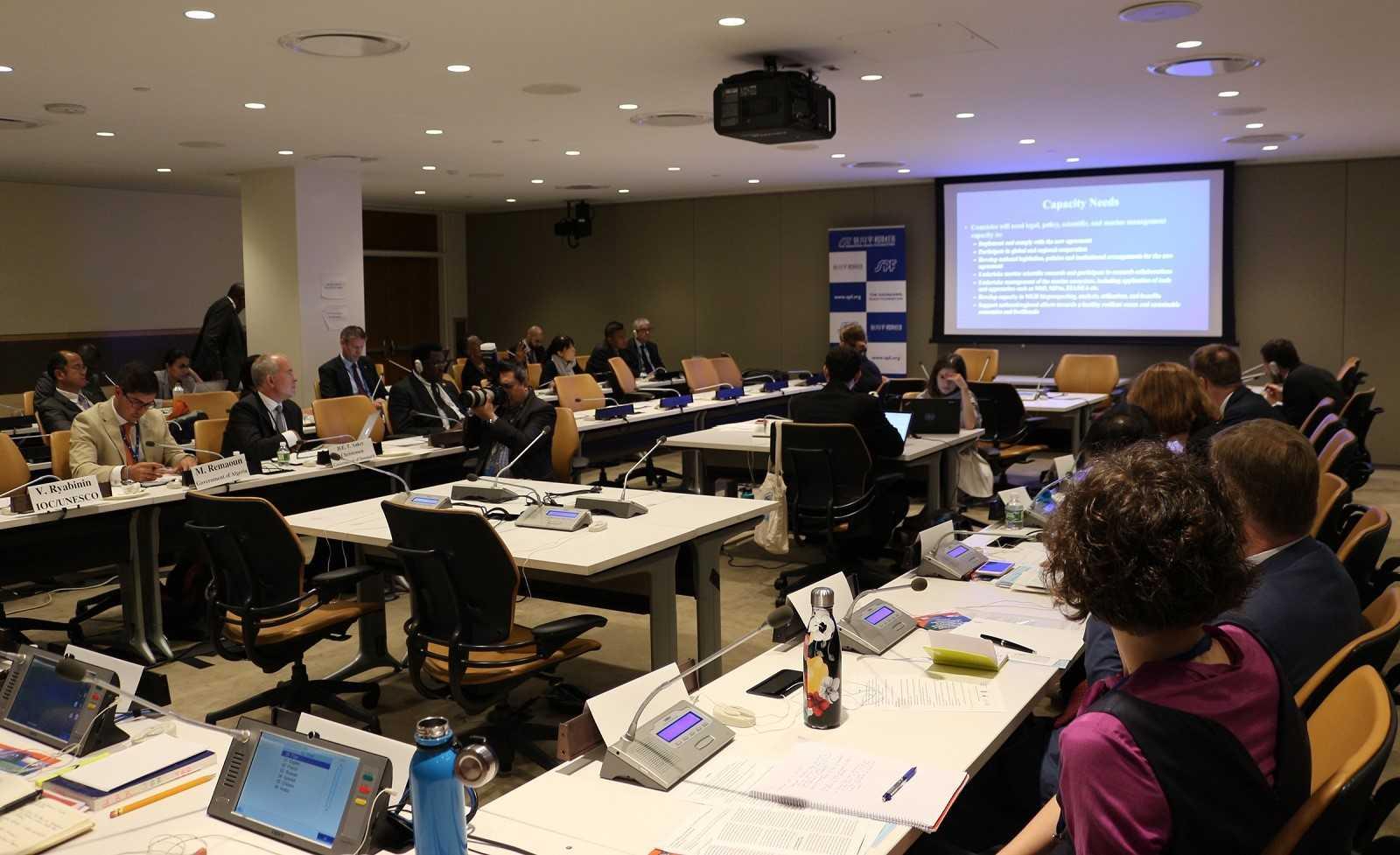 国連本部で会期中のBBNJ政府間会議で、能力開発に関するサイドイベントを開催しました