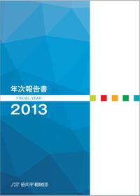 2013年度年次報告書