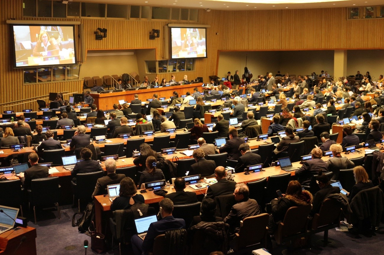 BBNJ政府間会議第2会期(IGC-2)への参加について