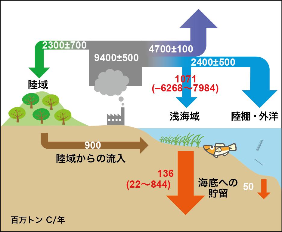 (画像)地球全体の炭素(ブルーカーボン)循環図