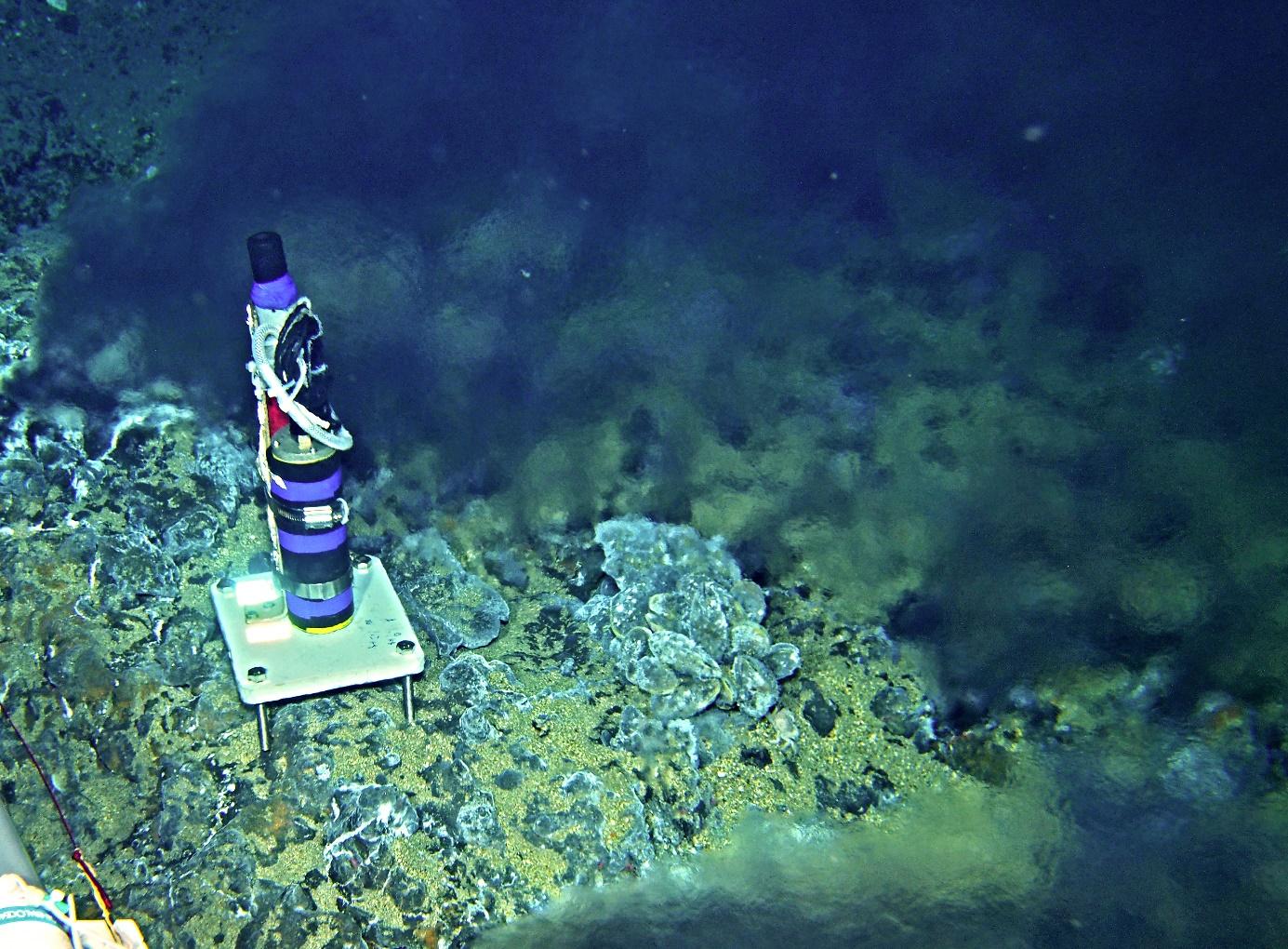 水曜海山熱水域に設置した集音装置