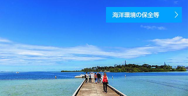 海洋政策研究所 | 笹川平和財団 - THE SASAKAWA PEACE FOUNDATION