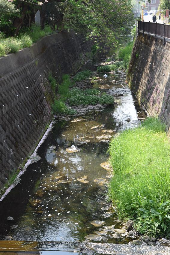 (写真)水路や川を経て、町中のごみは最終的に海へと流れ着く