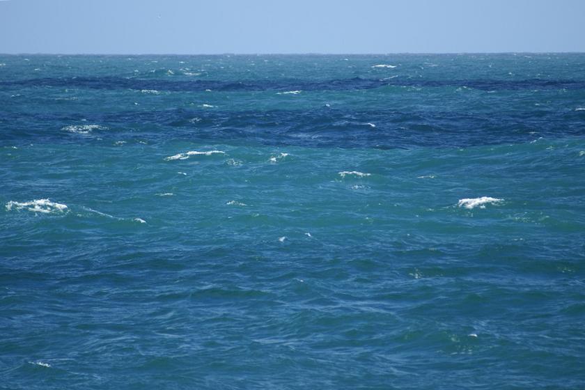 (キャプション)ベーリング海の写真。緑がかって見える部分が、円石藻のブルーム(写真提供=原田尚美氏)