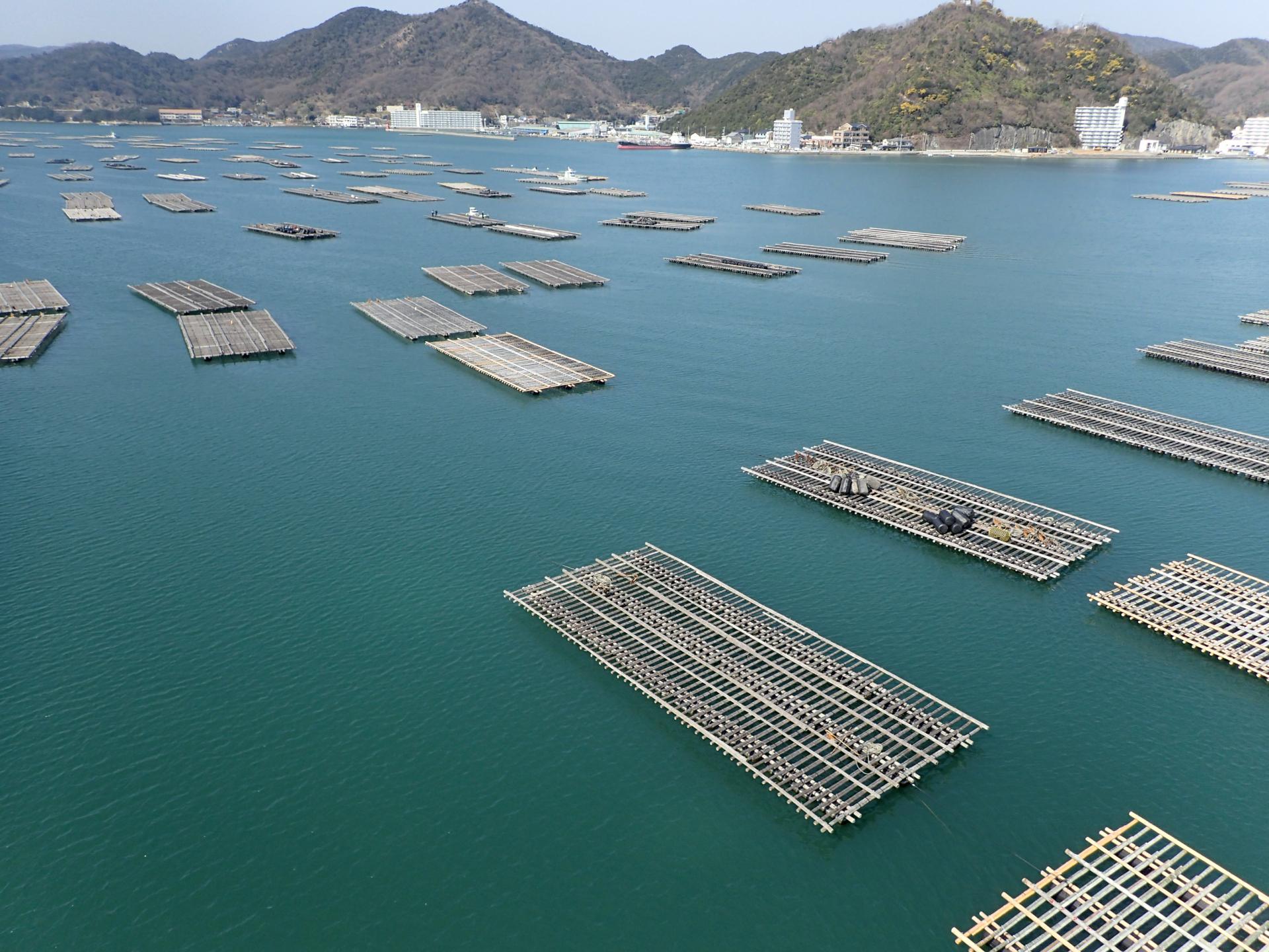 (キャプション)岡山県備前市日生町のカキ筏。同町はブルーエコノミーで地域を活性化している