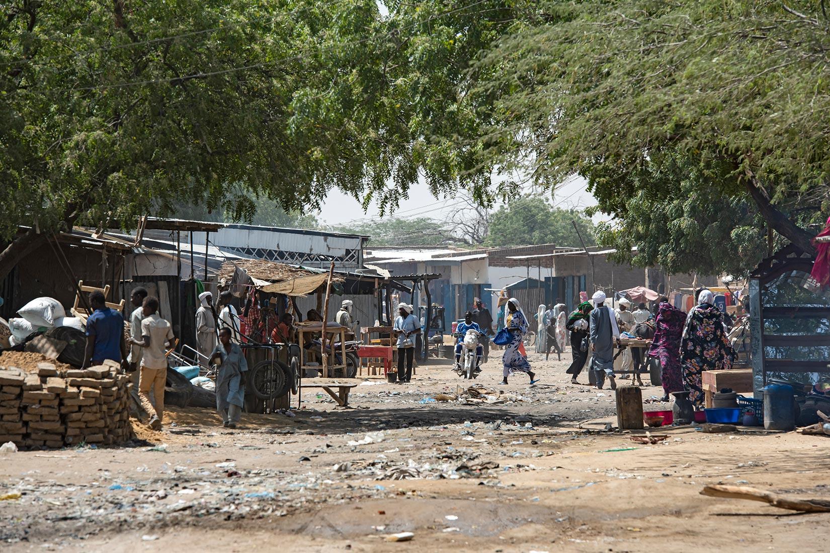 チャド大統領の死去で変わるアフリカの紛争局面