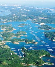 沿岸域管理の森川海の総合診断