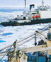 Development of a strategy for sustainable use of the Northern Sea Route
